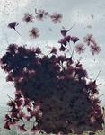 The Blossom Mandala 4 by Kristen Cooney