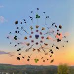 The Blossom Mandala 8 by Kristen Cooney