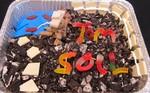 Tom Soil