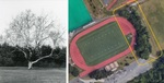 Collegeville in Transition: A Look at Landscape Change on the Ursinus College Campus and Beyond