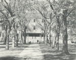 Path to Myrin Library, 1978