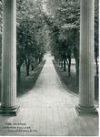 The Avenue. / Ursinus College, / Collegeville, PA.
