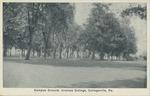 Campus Ground, Ursinus College, Collegeville, Pa.